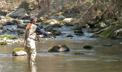TROUT FISHING AT BLACKBERRY BROOK
